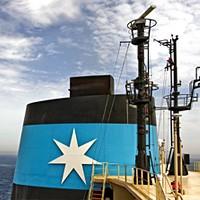 Maersk Line na minusie